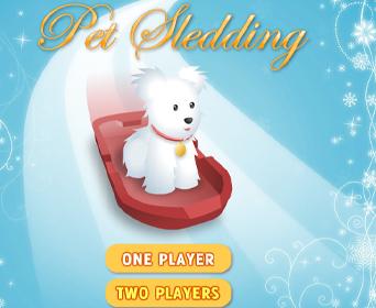 Pet Sledding