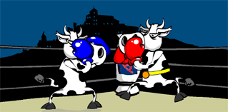 Cow fighter